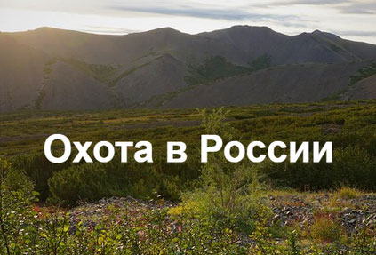 Международный онлайн-сервис для бронирования охоты вышел на российский рынок